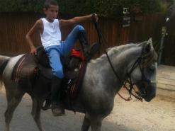 צילום של בחור שרוכב על סוס