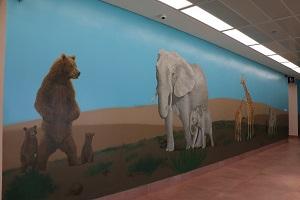 ציור קיר של דובים, פילים, ג'ירפות וחמורים