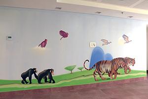 קופים ונמרים