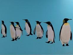 ציור קיר של פינגווינים במרכז שלוה ירושלים